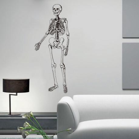 Vinilo decorativo Esqueleto humano, huesos